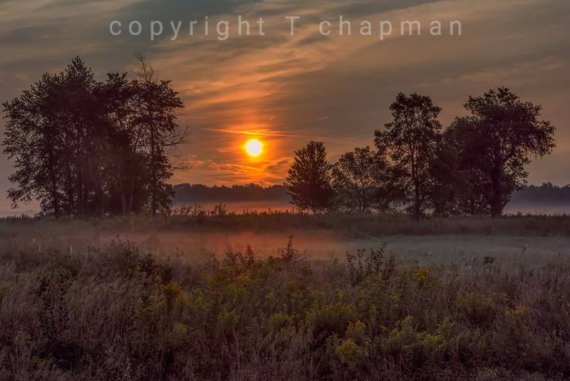 Fermi Sunrise