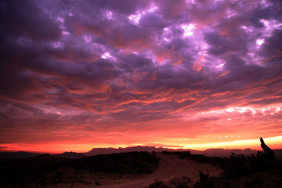 I was gifted one morning by this magical Sunrise of the Chisos while camping on a Friend's property in Terlingua, Texas.