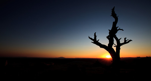 Sunrise on Muley Point, Utah.