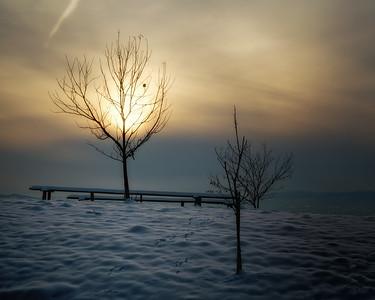 Sonnenuntergang am Sausal