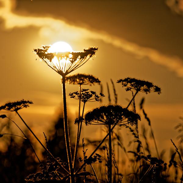 DSC_1024_PS_SunsetSunset Gaberl.jpg