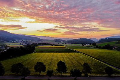 Morgendämmerung im Reiner Feld
