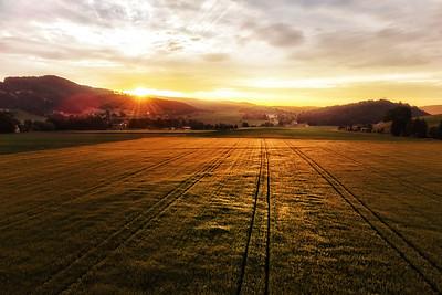 Morgenstimmung im Reiner Feld