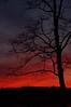 DSC_6049.JPG  Pleasant Sunset 9.  Captured at Point Pleasant, Ohio, December 2008.