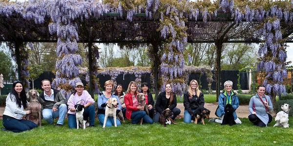 Kyra Sundance's Dog Tricks Workshop