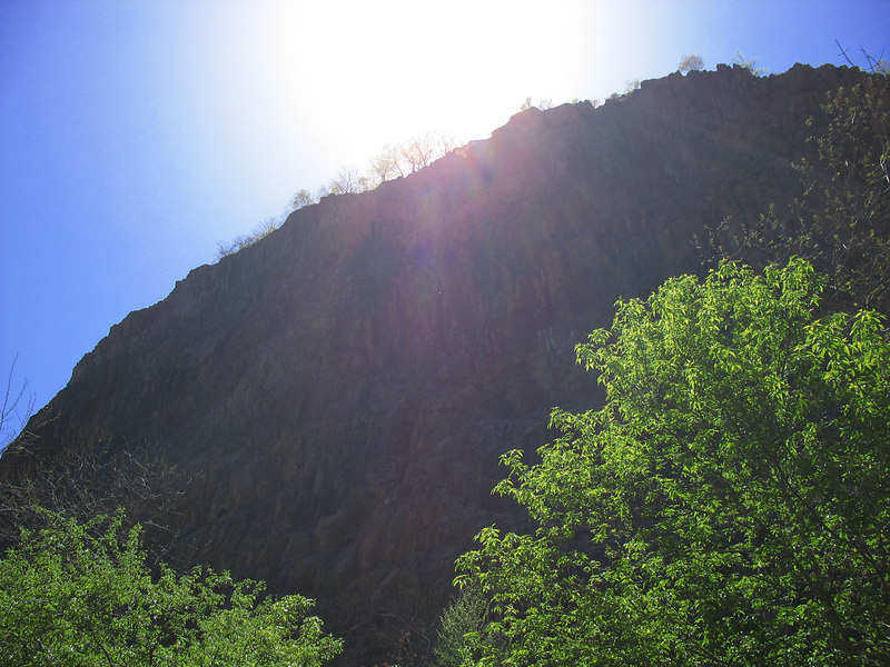 Looking up the Palisades