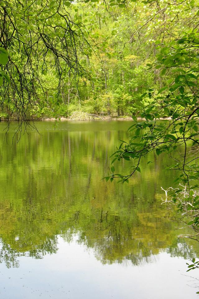 Greenbrook Sanctuary