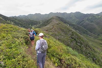 Hawaii Loa 2014