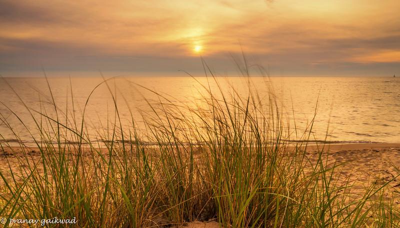 Beach Grass Sunset 2