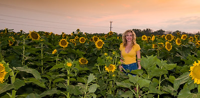 sunflowers-0675