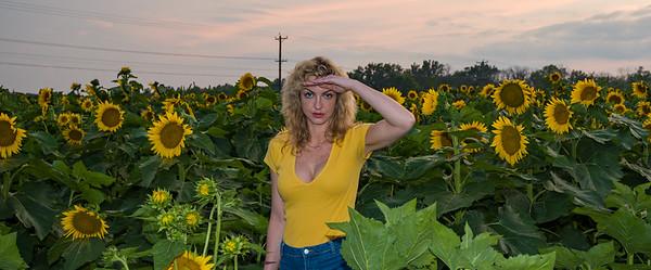 sunflowers-0681