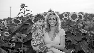 sunflowers-3923-3