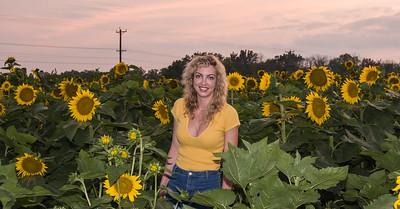 sunflowers-0678