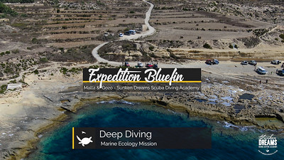 Expedition Bluefin: Malta & Gozo - Deep Diving