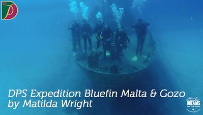 Expedition Bluefin: Malta & Gozo DPS 2019 by Matilda Wright
