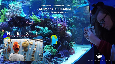 Sunken Dreams Ex35 Belgium & Germany Episode 5