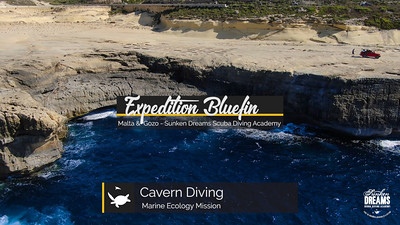 Expedition Bluefin: Malta & Gozo - Cavern Diving