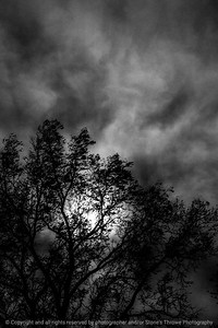 015-clouds-wdsm-03nov13-bw-5687