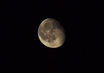 The Moon is the only natural satellite of the Earth and the fifth largest moon in the Solar System. Photo: Martin Bager.
