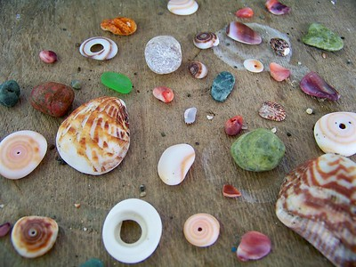 Beach combing treasures. Pacific coast, Panama.