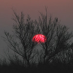 Sunrise  -  La Rochelle