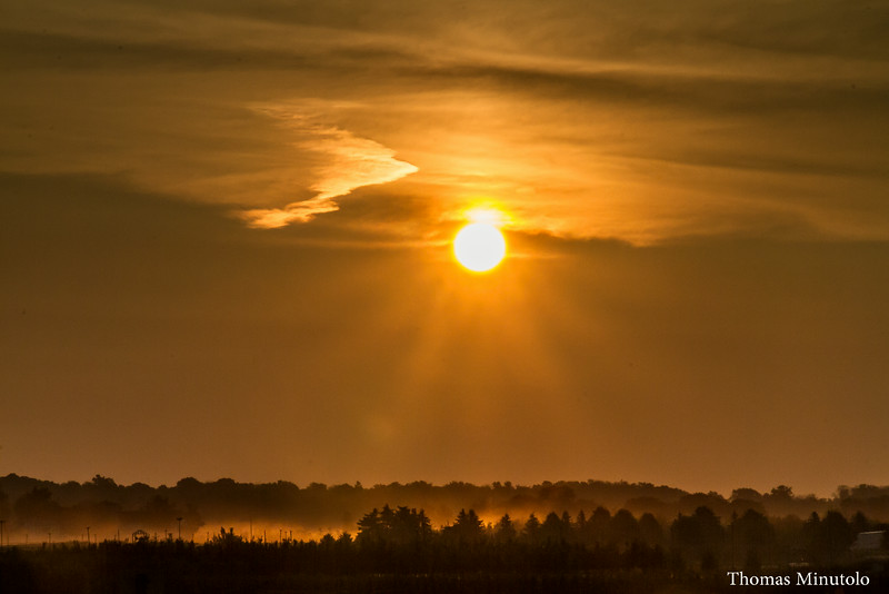 A Golden Sunrise In New Carlisle  8-7-2014