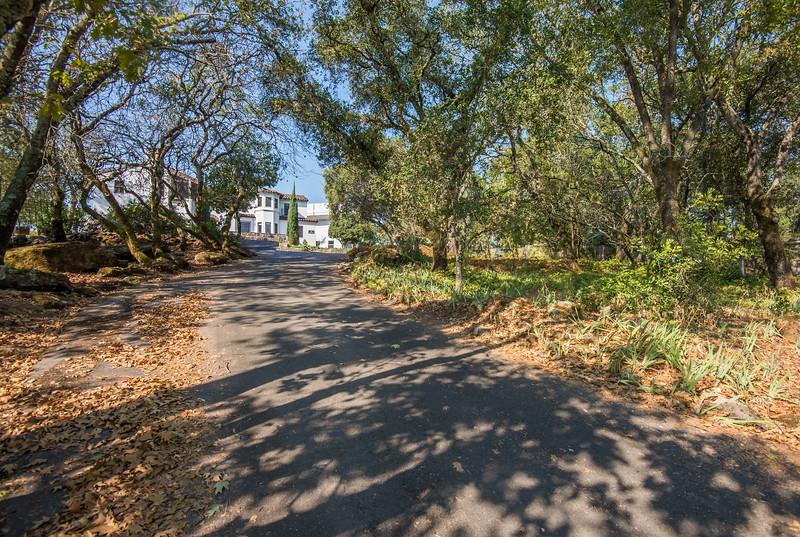 DSC_4442_driveway
