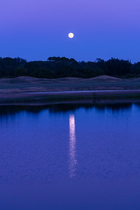 201229_12_FL_7291_Moonrise-E-E-1
