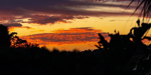 210210_12_FL_7291_Sunset-1