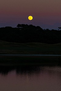 201229_06_FL_7291_Moonrise-E-1