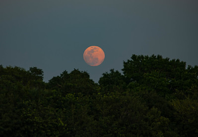 200407_02_FL_7291_Moonrise-Edit-Edit-1