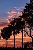 160826_06_FL_SK_Sunrise-1