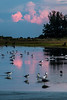 160827_46_FL_SK_Sunrise-1