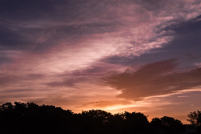 160826_24_FL_SK_Sunrise-1