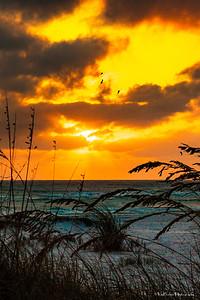 121229_FL_SK Sunset_41-3p1