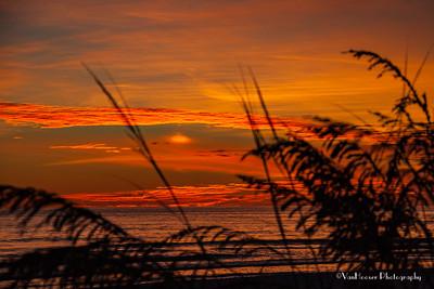 121223_FL_SK Sunset_649-1