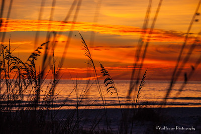 121223_FL_SK Sunset_641-1