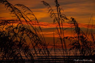 121223_FL_SK Sunset_634-1