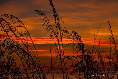 121223_FL_SK Sunset_639-1
