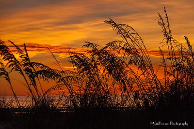 121223_FL_SK Sunset_630-1