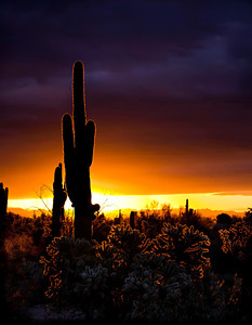 superstitions_1210_0022
