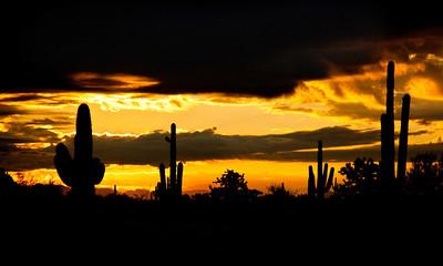 sonoran_sunset_rivsup0109_25