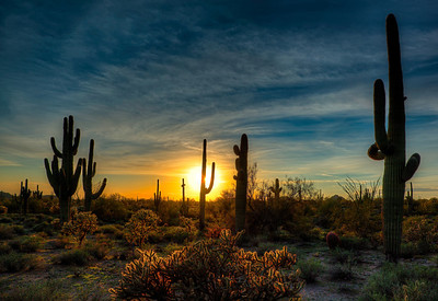 sonoransunset_3509_10_11