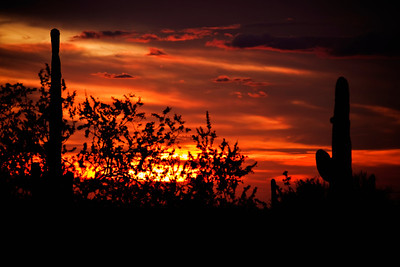 sonoran_sunset_1full