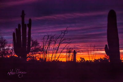 Lr_sonoran_sunrise_mg7103_121115-2