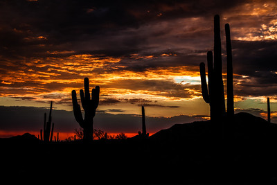 sonoran_sunset_072012_4051_1