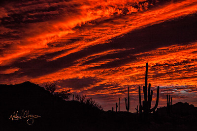 Lr_sonoran_sunrise_mg7125_121115-2