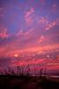 151112_MD_OC Sunrise_576-1