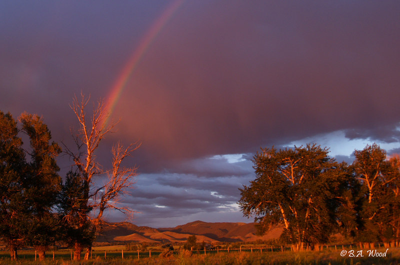 RB 025<br /> <br /> Rainbow over the Ranch.