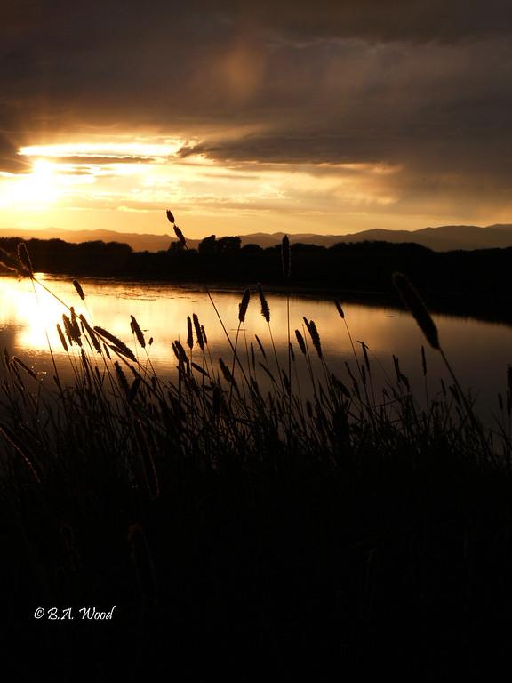 SS 023<br /> <br /> Sunset on a Golden Pond.